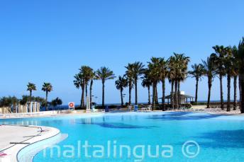La piscina del Hilton con vistas al mar