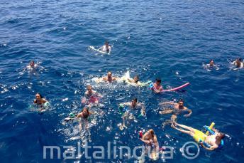 Un grupo de estudiantes de inglés nadando juntos