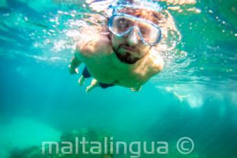 Un estudiante haciendo snorkel