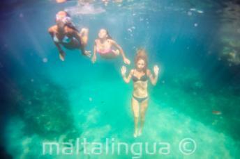 3 amigos nadando bajo el mar