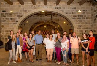Visita guiada en inglés a la bodega con cata de vinos